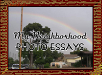 My Neighborhood Photo Essays